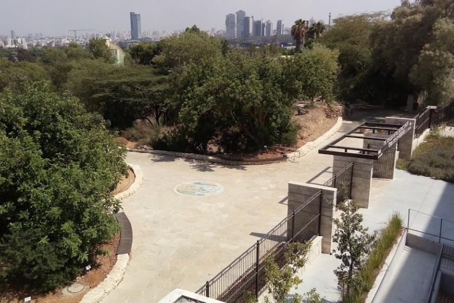 מבט ממרפסת מוזאון הטבע לעבר רחבת הכניסה לגן הבוטני. במרכז הרחבה ממוקם עיגול הפסיפס וממנו מתחיל הסיור בגן.