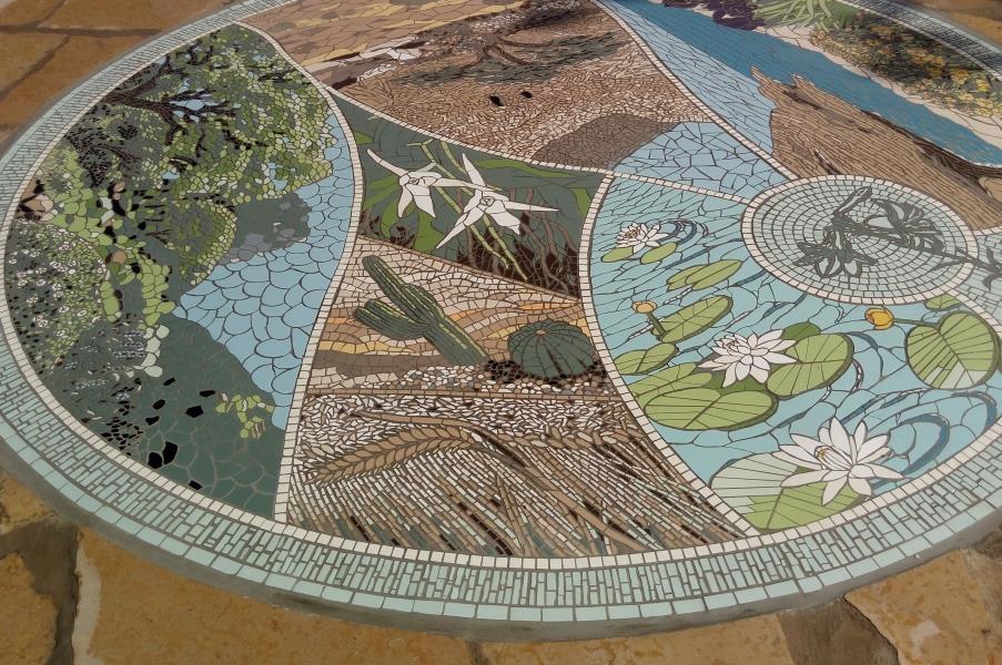 אוספי הגן: אוסף הסחלבים, אוסף הקקטוסים וצמחי המחקר.